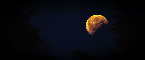 Goodbye Blood Moon